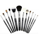 Essential Kit Makeup 12 quality brushes- Free beautiful container