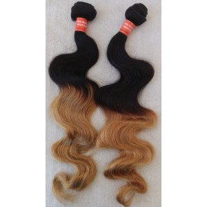 /441-2366-thickbox/2-bundles-brazilian-virgin-ombre-color-wefts.jpg