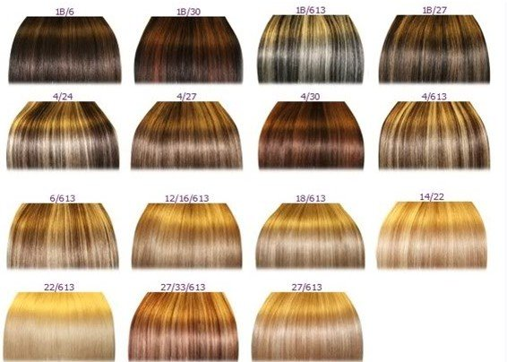 Hair color wheel ion